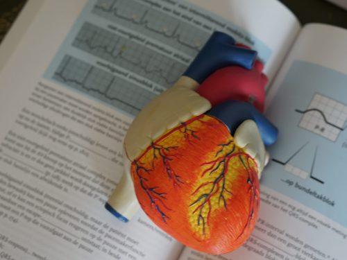 L'esercizio fisico adattato nei soggetti con scompenso cardiaco